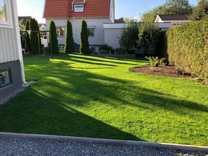 David Krifors gräsmatta på Hammarby stadshage. Foto: David Krifors