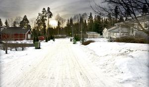 I slutet av Slipgatan finns ett skogsområde som kan bli ett framtida villaområde.