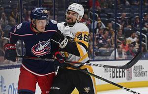 Gabriel Carlsson får spela i AHL kommande säsong.