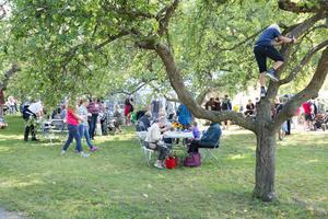 Örjansskolans fikabuffé fanns traditionsenligt bland äppelträden i marknadsområdets ena hörn.