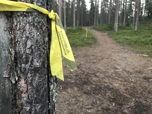 Skogsälskare som undertecknad får en smula ont i magen när band som dessa dyker upp i fina skogar.