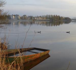 En vattenfylld båt och några änder som simmar omkring på det spegelblanka  vattnet i sjön Varpen.