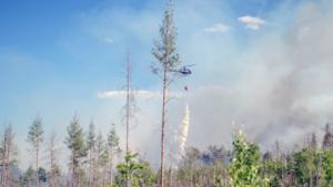 Skogsbrandsbekämpning måste fungeraFoto: Niklas Hagman