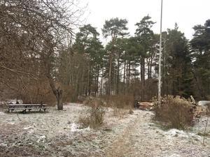 Endast trädgården och uthusen står kvar på den eldhärjade tomten vid Rumbagränd 2 i Nynäshamn.