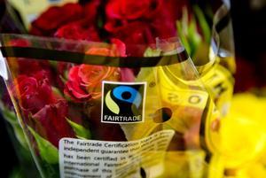 Bananer, vin och kaffe är exempel på produkter som ofta går att handla Fairtrade. Foto: TT