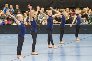 Hudiksvalls gymnastikförening är en av de föreningar som fått ett rejält bidrag i år.