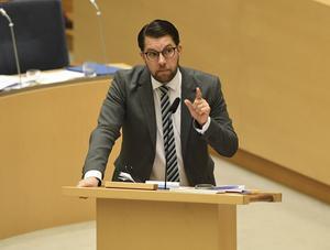 Jimmie Åkesson har hittills obekymrat kunna se sitt parti växa. Foto: Fredrik Sandberg / TT
