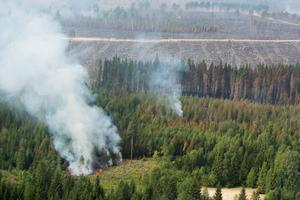 Det varma vädret skapar dåliga förutsättningar för att bekämpa skogsbränderna.