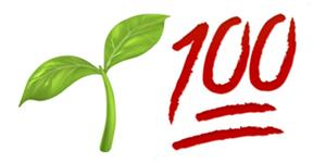 Planta 100. Va?