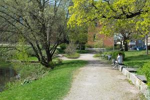 Lunchhäng bland pilträden vid fridfulla Bünsowska tjärnen.