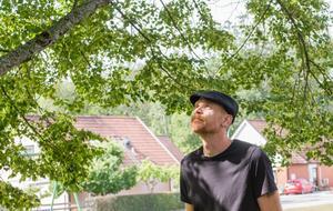 – Tittar man upp i träden sitter många fler humlor och bin och surrar. Det är viktigt att bevara bin. Kanske kan kommunen titta på och odla en annan sorts träd, säger Robin Pettersson.