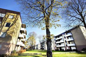 Bostadsbyggandet i Gävleborgs län minskade under 2014, men i år ser prognosen ljusare ut.