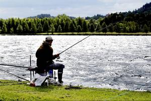 22 lag ställde upp i tävlingen 24-timmarsmetet som avgjordes längs Storsjöns strand under helgen.