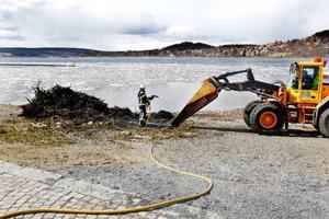 Räddningstjänsten fick rycka ut och släcka en brasa i Badhusparken strax före lunch på måndagen. Delar av centrala Östersund rökfylldes och flera fastighetsägare ringde till räddningstjänsten och klagade på röklukt i lokalerna.