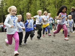 Lilla Kopparbergsloppet lockade många. Först ut var de allra yngsta, fyraåringarna. De tog sig an 500-meterssträckan med målmedvetna steg.