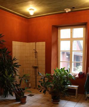 I badrummet dominerar varma färger. Eva gillar gröna växter och de får gott om plats i det stora badrummet.