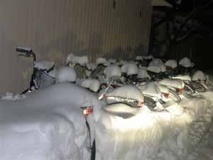 I en snöig liten bakgård vid Floragatan