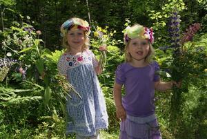 Barnbarnen Nova och Maya Hedström plockar blommar till midsommarstången i Hökåsen