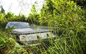 Naturvårdsverkets förslag om skärpt regelverk för hantering av skrotbilar upprör många bilfantaster.