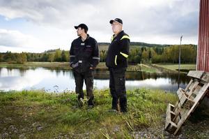 Stefan och Ulf Nyström vid en av sina potatisåkrar i Myre.