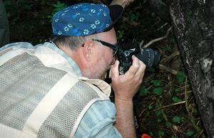 """Imponerad. Bengt Jürs från Helsingborg hittade spännande skalbaggar när han skulle studera en vedsvamp på en gammal trädstam. """"Kommer man från Skåne tycker man ju att det är fantastiskt vild natur här, bara inpå knuten."""""""