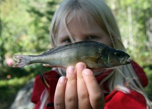 Ida Stockhaus har fått sitt livs första fisk.