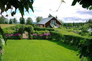 """För 15 år sedan såg makarna Lindbäcks tomt ut som vilken igenväxt bondgård som helst. I dag är bakgården en stor visningsträdgård med flera rum. På söndag visar de upp sin grönska i """"Öppen trädgård""""."""