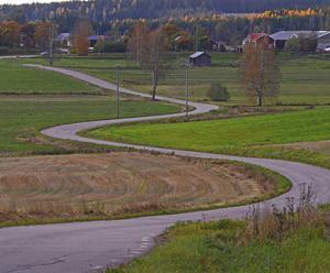 Kurvor nära Näsviken. Vad döljer sig bortom nästa krök?