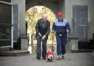 Trendiga farbröder. Veteranerna Lasse Åberg och Jon Skolmen, som veteranerna Stig-Helmer och Ole, driver milt med olika epokers tidsanda.