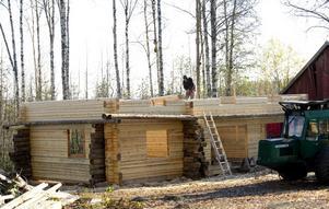 Så här såg det ut då Bror Olsson byggde timmerhuset under hösten i fjol. Inte långt efter att denna bild togs kom snön och ställde till det för timmermannen.