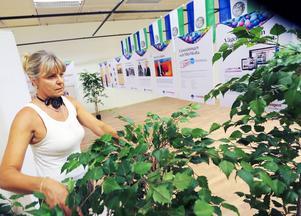 Annette Lindow har satt upp utställningen och dekorerat inför öppnandet.