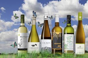 Hur goda är egentligen de ekologiska vinerna? Vår vinexpert har testat dem alla och tipsar om de bästa ekoköpen. På bilden ett antal av de godaste vita. Foto/kollage: Sune Liljevall