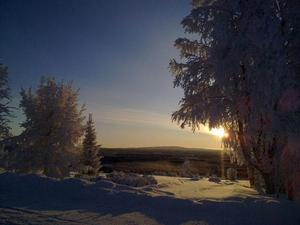Vacker bild tagen i Rönnöfors den 16 Januari 2010 Foto: Anna-Stina Tengström