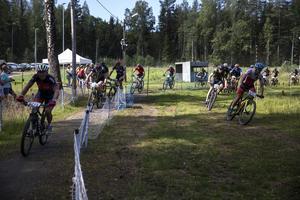 Det var 700 deltagare i årets tävling.