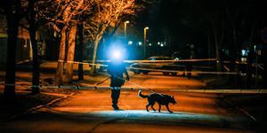 Polisen larmades till Skiljebo vid 19.45.
