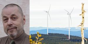 Inom ett  år ska kommunen besluta om vindkraftverken på Ripfjället.
