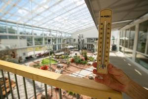 När det är riktigt varmt och solen skiner så stiger temperaturen kraftigt utanför de fyra avdelningarna.