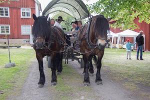 Många besökare passade på att ta en tur med häst och vagn.