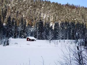 Tjärnboviken, vintern 2010. I denna idyll utspelade sig ett passionerat kärleksdrama, både i verkligheten och i dikten. Ivar Lo-Johansson och Maria Nordberg bodde här sommaren 1927.  Foto: Birger Ekerlid