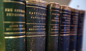 Hemma hos Josefin Söderberg står förstås flera fina band av Agnes von Krusenstjerna i bokhyllan.