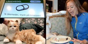 Inom kort kan robotar vara både husdjur och medhjälpare i hemmet. Therese Bengtner hos Atea demonstrerar matningsroboten.