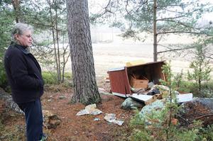 Den här bilden är tagen efter att en björn varit på besök vid biodlingen i våras.