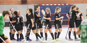 Sala Silverstadens damer är ett division 1-lag nästa säsong också.
