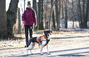 Om rovdjuret har gått genom ett staket och päls har fastnat kan Ulla hitta det för att djuret ska kunna artbestämmas.