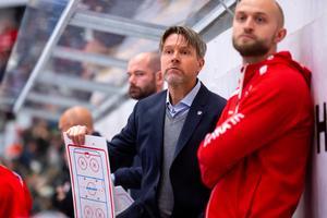 Timrå IK:s assisterande tränare Ante Karlsson. Foto: Pär Olert / BILDBYRÅN (arkivbild)
