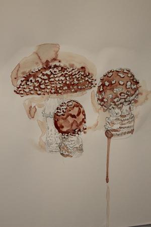 En av Åsa Ersmarks sista svampbilder som målades i mars månad i år.