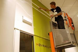 Högt uppe under taket, målar Daniel Franzén den bakgrund han förberett som skiss.