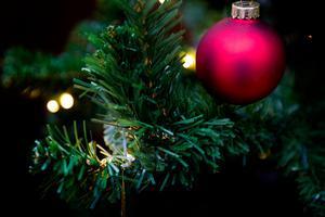 Julgranen ska till kommunens återbruk, oftast som trädgårdsavfall. Plastgranen oftast i brännbart, eller osorterbart, men fråga personalen på varje enskilt återbruk eftersom det kan skilja sig åt.