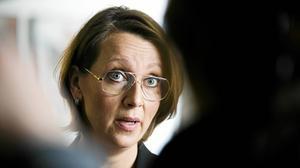 Johanna Möllers advokat Amanda Hikes.