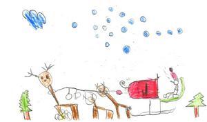 3:e pris Johan Sundemyr, 8 år, Sveg. Kategori 6-8 år.